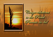 Jeanette K - Congratulations to the Proud Parents to be Sunset