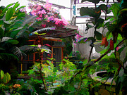 Janet Maloy - Conservatory at the Fort...