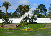 Emmy Marie Vickers - Conservatory of Flowers...