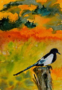 Magpies Paintings - Consider by Beverley Harper Tinsley