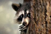 Raccoon Digital Art - Conspicuous Bandit by Christina Rollo