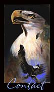 Bald Eagles Pastels Posters - Contact 2 Poster by Brooks Garten Hauschild