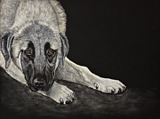 Working Dogs Originals - Contemplation by Arlette Seib