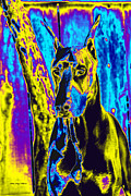 Dog Print Prints - Contemplation Print by Rita Kay Adams