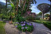 English Landscapes - Convent Garden