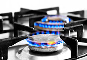 Home Appliance Posters - Cooker Gas Hob With Flames Burning Poster by Fizzy Image