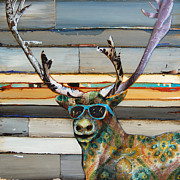 Danny Phillips Framed Prints - Cool Caribou Framed Print by Danny Phillips