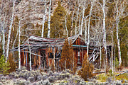 Photography Prints Prints - Cool Colorado Rural Rustic Rundown Rocky Mountain Cabin  Print by James Bo Insogna