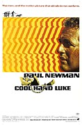Newman Framed Prints - Cool Hand Luke Framed Print by Sanely Great