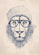 Humor Digital Art Prints - Cool lion Print by Balazs Solti