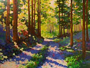 Woods; Shadows; Trees Paintings - Cool of the Shade by Mary McInnis