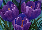 Vikki Wicks - Cool Purple Crocus