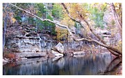 Ozark Mountains Framed Prints - Coon Creek Framed Print by Brian Hubmann
