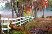Fall Scenes Framed Prints - Coosaw Horse Fence Framed Print by Scott Hansen