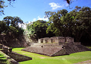 Mayan Paintings - Copan Ball Court by Shelly Leitheiser