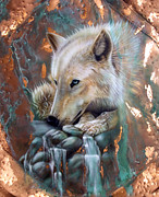 Verdigris Framed Prints - Copper Arctic Wolf Framed Print by Sandi Baker