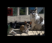 Jack Russell Digital Art - Copper Gang by Cheryl Rogers