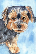 Toy Dog Paintings - Copper Yorkie Yorkshire Terrier dog watercolor by Cherilynn Wood
