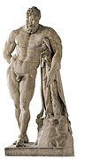 Demigod Photos - Copy From Lisippo, The Farnese Hercules by Everett