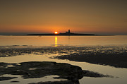 John Hallett - Coquet Island sunrise