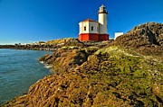 Adam Jewell - Coquille Lighthouse