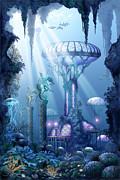 Coral City   Print by Ciro Marchetti