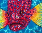 Coral Grouper Print by Daniel Jean-Baptiste