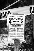 Caution Tape Posters - Cordoned Off Sea Turtle Nest With Warning Sign Dry Tortugas Florida Keys Us Poster by Joe Fox