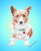 Animal Shelter Mixed Media - Corgi - a former shelter sweetie by Dave Anderson