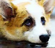 Corgis Framed Prints - Corgi Art - That Look Framed Print by Sharon Cummings