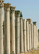 Sabrina L Ryan - Corinthian Columns In Turkey
