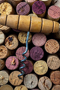 Sparkling Wines Photo Prints - Corkscrew on top of wine corks Print by Garry Gay