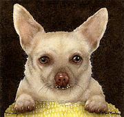 Chihuahua Paintings - Corn dog... by Will Bullas