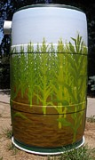 Rain Barrel Paintings - Corn Field by Katherine Tesch
