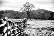 Winter Prints Photos - Cornered in Gettysburg by John Rizzuto