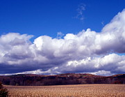 Cornfield Originals - Cornfield and Clouds by Christian Mattison