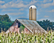 Cornfield Photos - Cornfield Barn by Greg Hagan