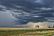 Grain Bin Posters - Cornfield Storm Poster by Chris Harris