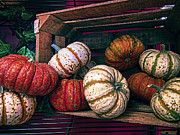 Pantry Photos - Cornucopia by Daniel Hagerman