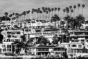 Southern Homes Posters - Corona del Mar California Black and White Picture Poster by Paul Velgos