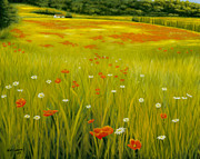 Kirk Graham - Cortona Poppies