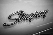 Badge Photos - Corvette Stingray Emblem Black and White Picture by Paul Velgos