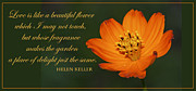 Helen Digital Art Posters - Cosmos Helen Keller Quote Poster by A Gurmankin