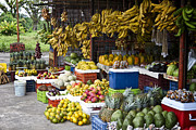 Bananna Prints - Costa Rica Farm Stand Print by Carrie Cranwill