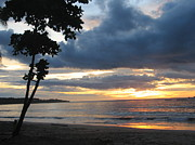 Beaches Art - Costa Rica Palm Sunset - Seascape by Shelia Kempf