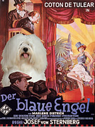 Coton De Tulear Framed Prints - Coton de Tulear Art - Der Blaue Engel Movie Poster Framed Print by Sandra Sij