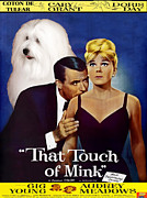Coton De Tulear Framed Prints - Coton de Tulear Art -That Touch of Mink Movie Poster Framed Print by Sandra Sij