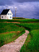 Canada Metal Prints - Cottage Among the Dunes Metal Print by Edward Fielding