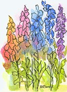 Foxglove Flowers Drawings Framed Prints - Cottage Flowers Framed Print by Holly Banks