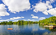 Property Prints - Cottage lake with diving platform and dock Print by Elena Elisseeva